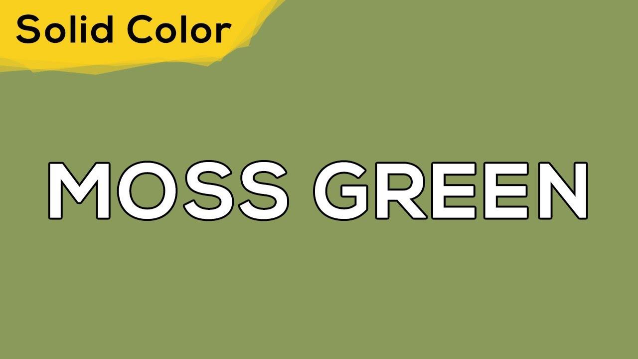 MOSS GREEN – Solid Color Light 134 💡 illumination, ambient, monitor test, wallpaper . jomirife