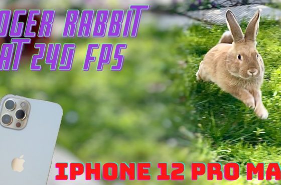 iPhone 12 Pro Max – SLOW MOTION 240P TEST – ROGER RABBIT AT HIGH SPEED