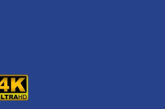 DARK CORNFLOWER BLUE screen – 10 hours in 4K – Color display – Led Lights –  Background – Mood Light